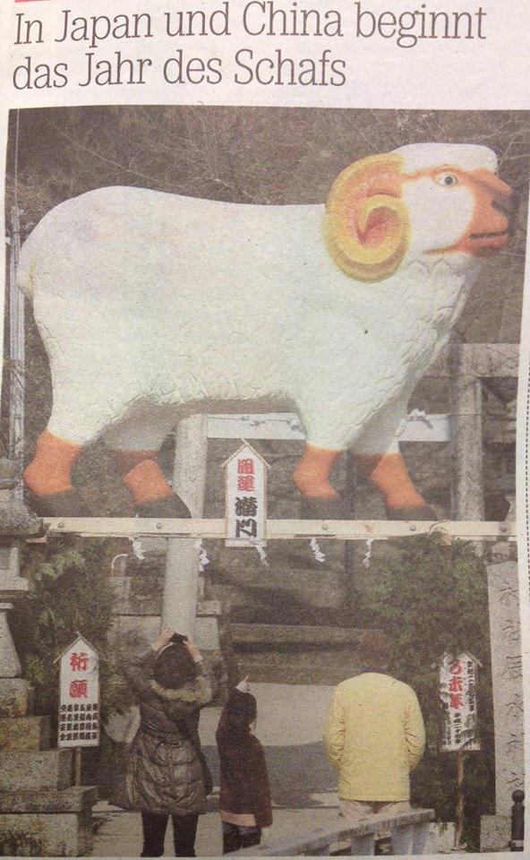 Jahr des Schafes